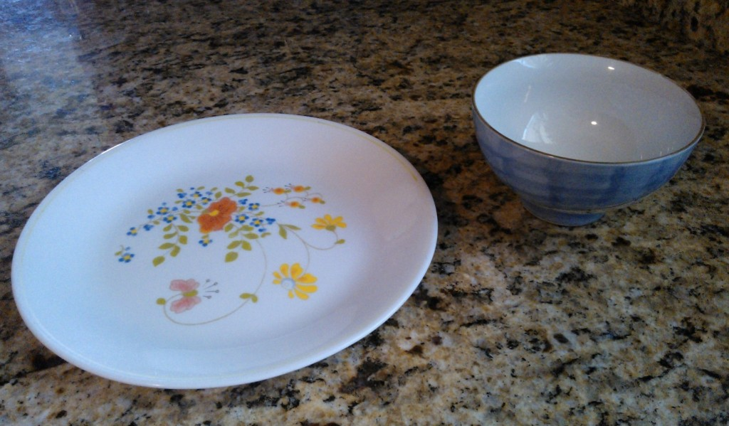 plate and cat food bowl