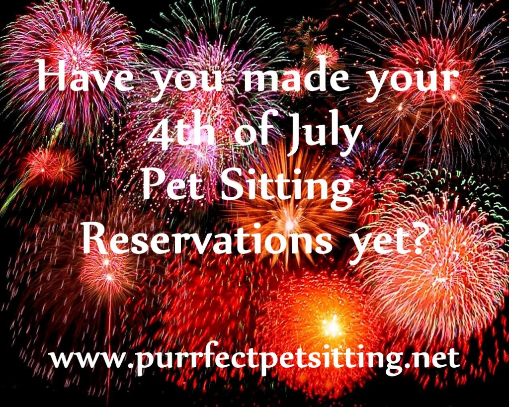 pet sitting fireworks