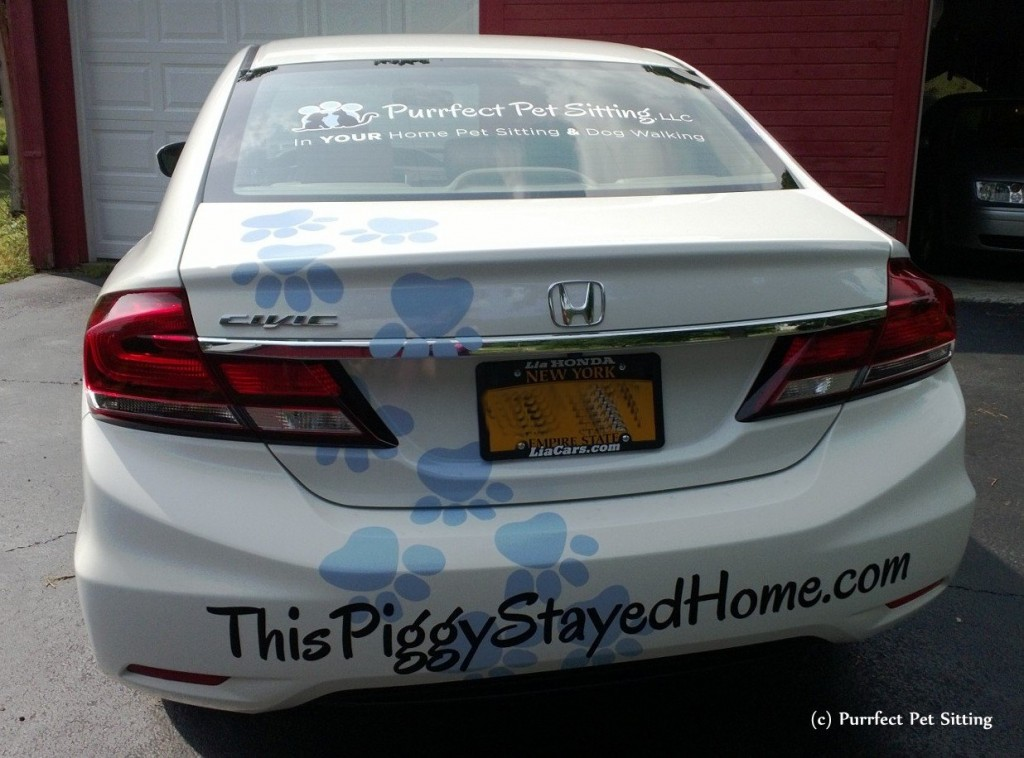 back of wrapped pet sitter car