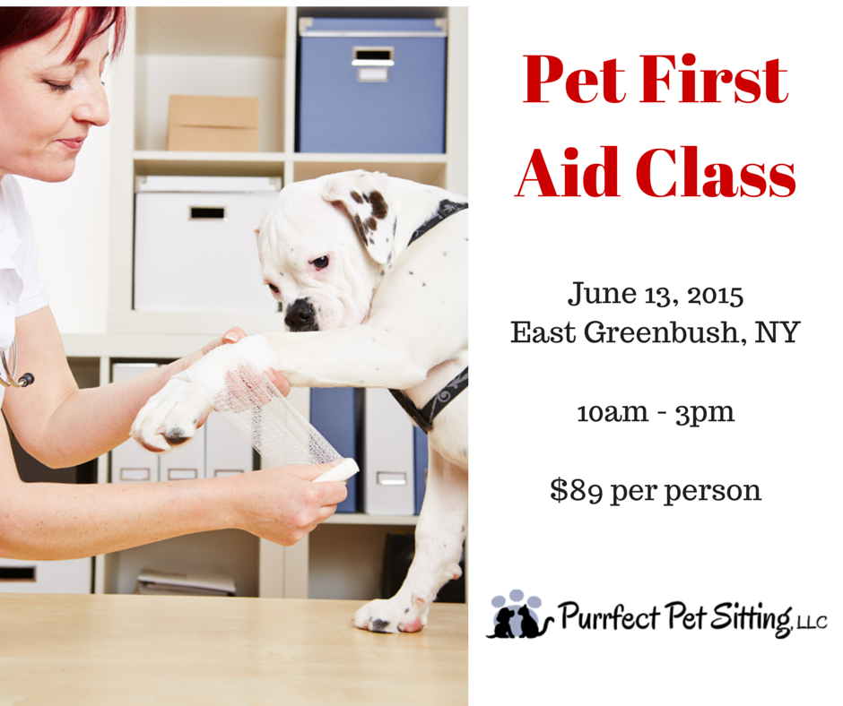 Pet First Aid Class