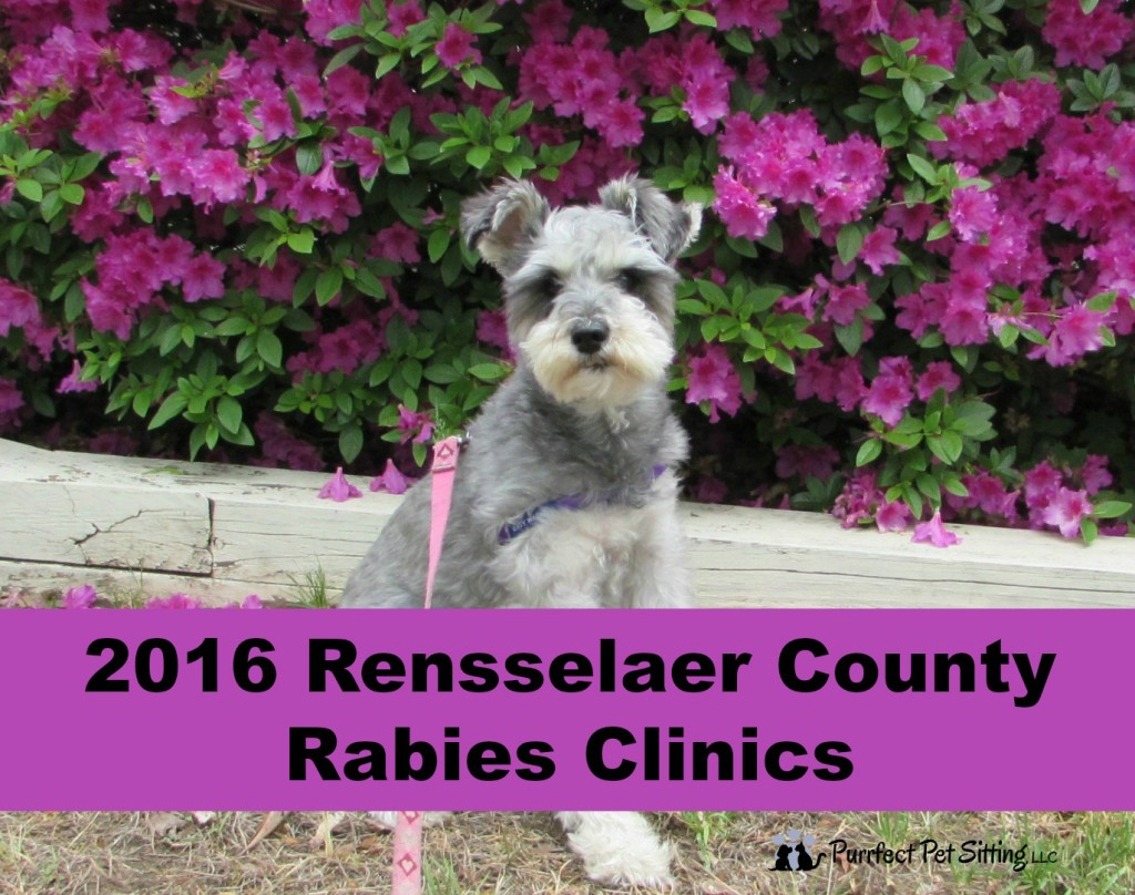 2016 Rensselaer County Rabies Clinics