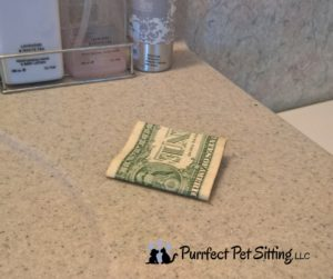 money left on counter