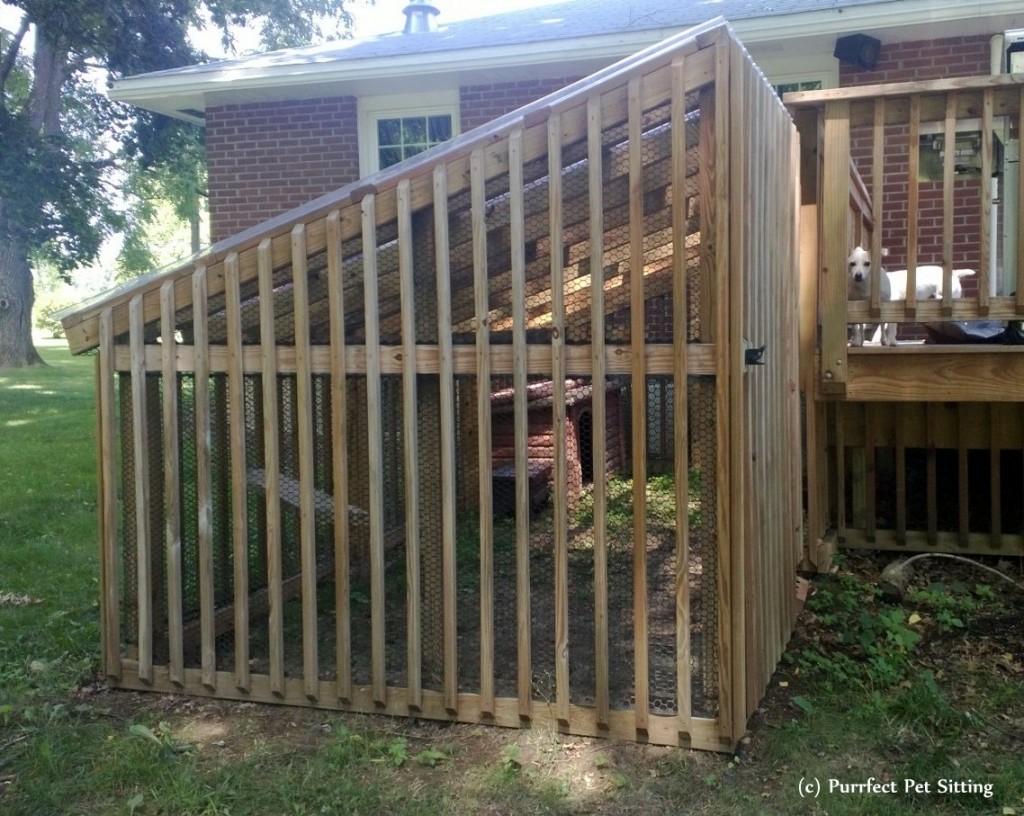 Your Pet Sitter S Pets Cat Enclosures Purrfect Pet